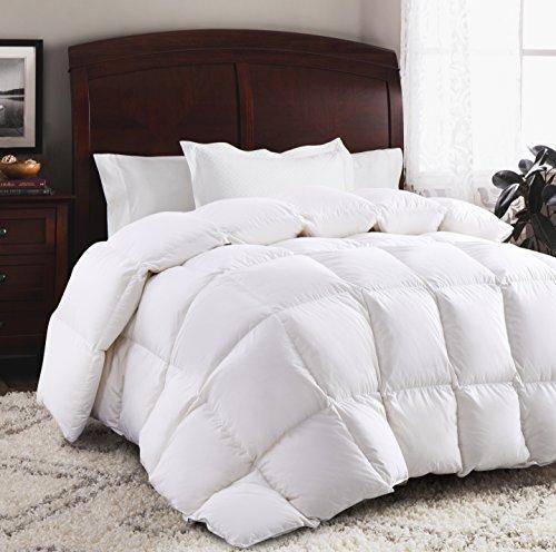 Cotton Filled Down Alternative Comforter